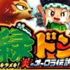 緑ドン~キラメキ!炎のオーロラ伝説~